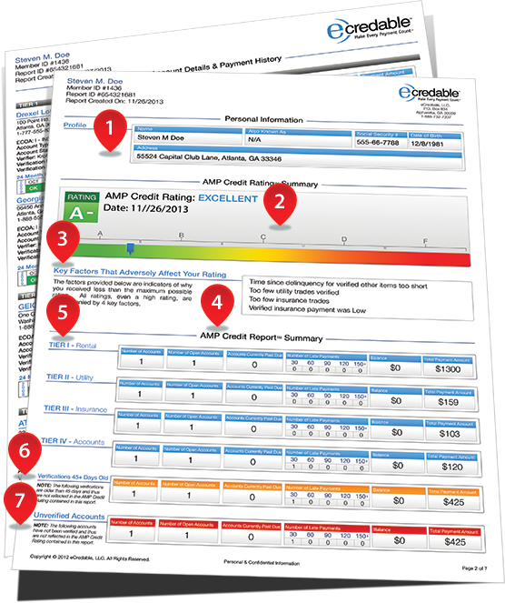 AMP Credit Report Details Page One